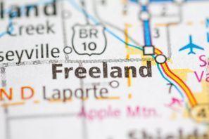 Freeland, MI