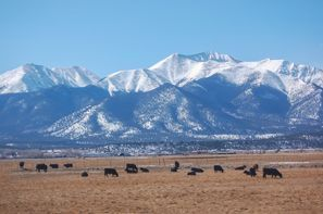 Highlands Ranch, CO